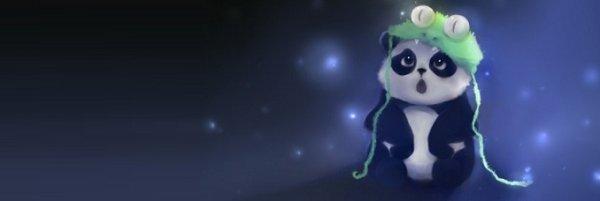 Bienvenue au blog de little panda