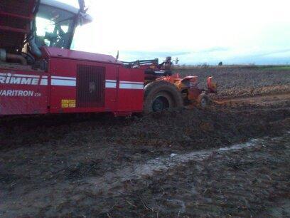 arrachage pomme de terre 2012