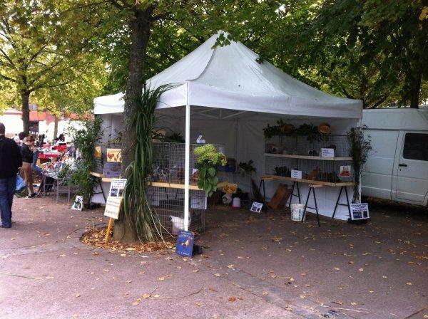 Présentation du 06/10/2013 sur la commune de Lizy sur Ourcq