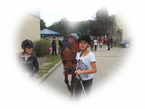 Cours d'équitation [du O8/O9 au 29/O9]