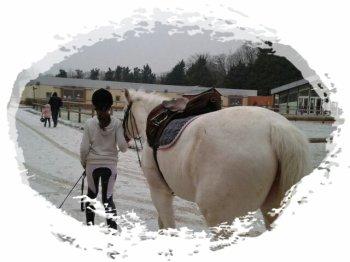 Cours d'équitation [du O2/O2 au 23/O2]