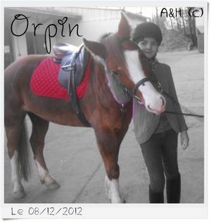 Cours d'équitation [du 27/04 au 25/05]