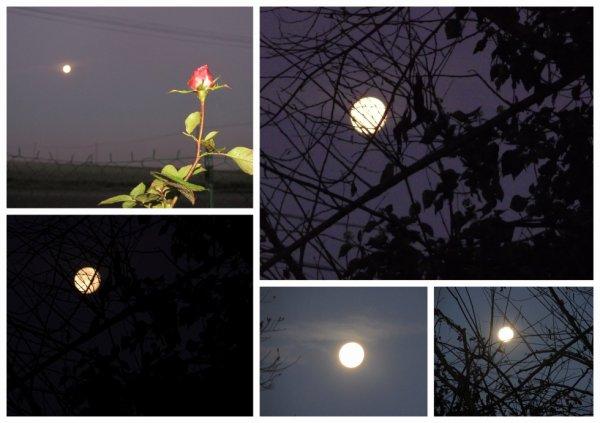jolie lune ce matin