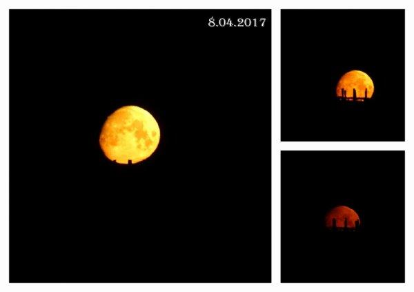 superbe la lune hier matin à 6h15 qui se cache derriere les vignes , dommage mes photos sont pas top