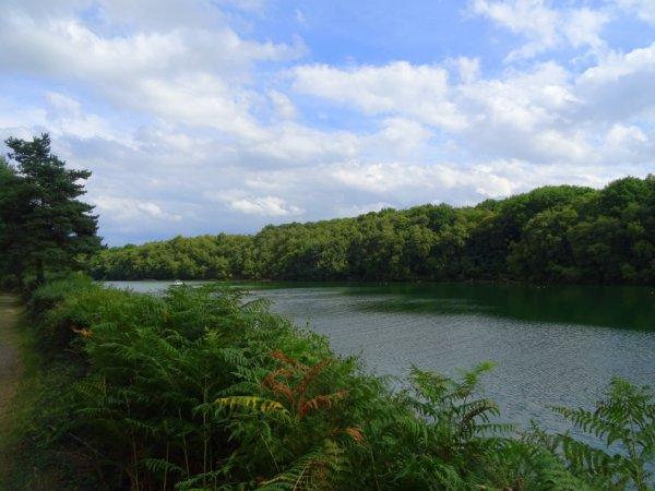 le lac d'abbaretz