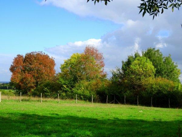 les couleurs d'automne sont arrivées