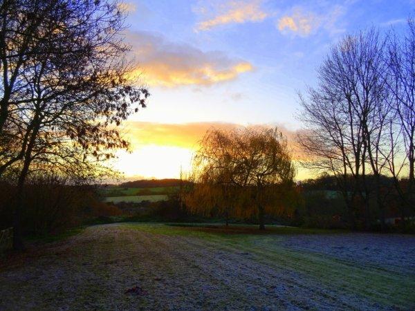 belle gelée ce matin