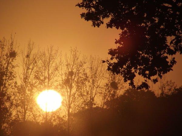 levé du soleil (dép) 56