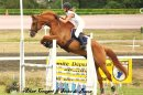Photo de materiel-d-equitation40