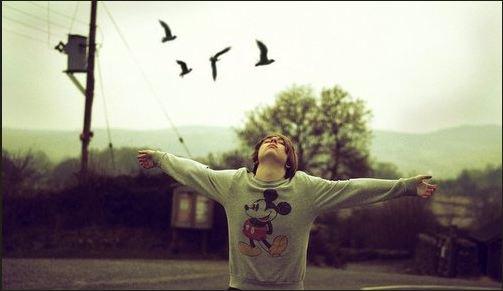 Chapitre 5 : [Run Fly Run] ♥