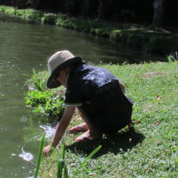Jules très patient à réussir à faire manger les canards dans sa main !