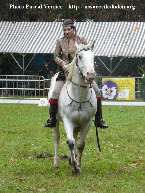 Festival du Cheval - St Jean les deux jumeaux - 2011