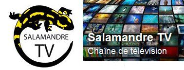 SALAMANDRE TV - Emission sur le Parisis Code en direct