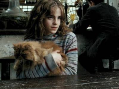 Harry potter et le prisonnier d 39 azkaban hermione for Dans harry potter comment s appelle le directeur