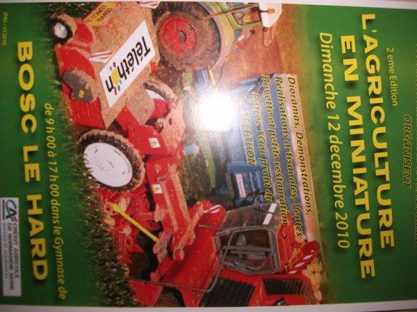 exposition  de miniature  agricole