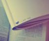 Je t'aime …