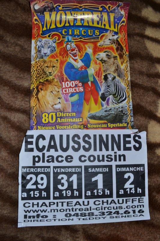 Montreal Circus (Teddy Seneca) à Ecaussinnes Belgique