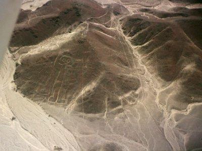 Les pampas de Nazca
