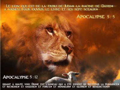 Le Lion De Juda Et L Agneau De Dieu The Pure Blog