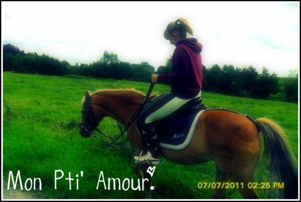 « Plus le cavalier est bête et mieux son cheval le comprend. » ♥