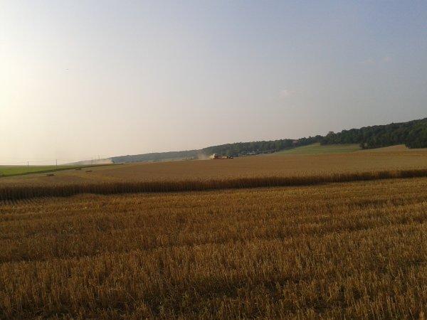 moisson 2012