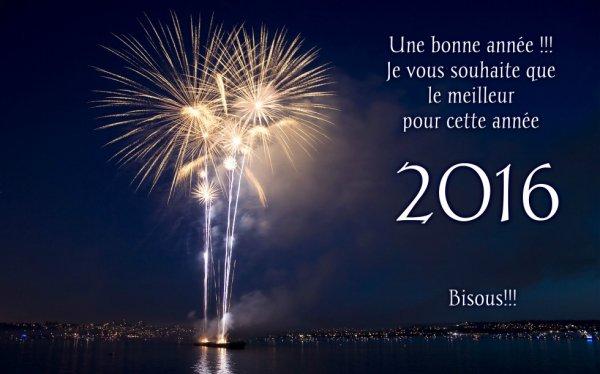 Mes voeux pour cette Année 2016 !!!