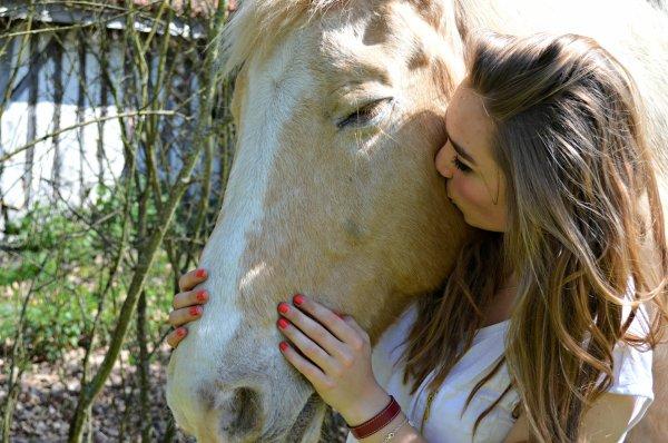 « Monter à cheval enivre comme le vin. Une fois en selle, on perd la raison et on commence à se balancer comme dans un rêve héroïque. »