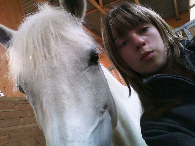 c'est the blog sur les chevaux