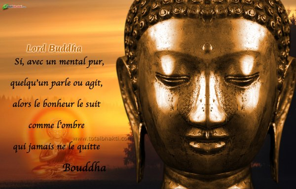 "Favori Articles de sagesse taggés ""citation"" - Page 15 - http://sagesse  BC39"