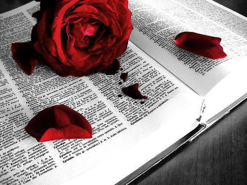 """"""" La lecture est au seuil de la vie spirituelle ; elle peut nous y introduire : elle ne la constitue pas. """"  [ Daniel Pennac ]"""
