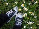 Photo de crazy-dreams93