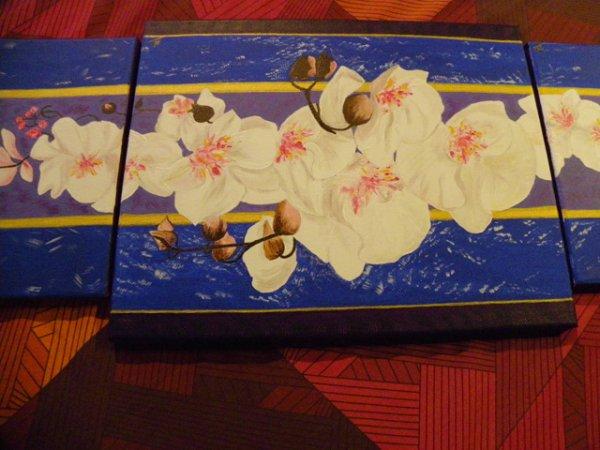 26-orchidées blanches