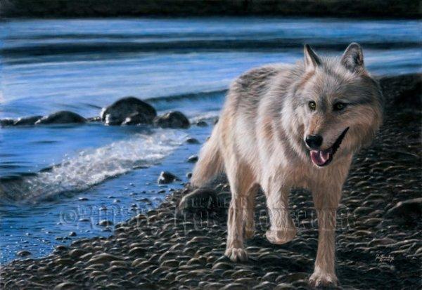 Bientôt la plage avec ma Louve!!