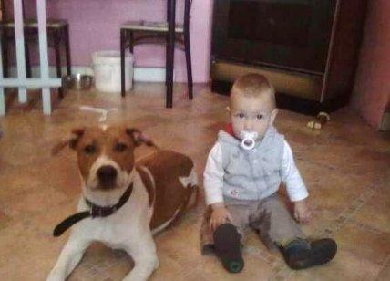 toscane et mon fils noah
