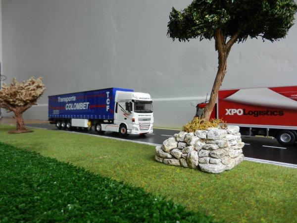 Daf -Transports Colombet de Ste Sigolene 43 Haute Loire