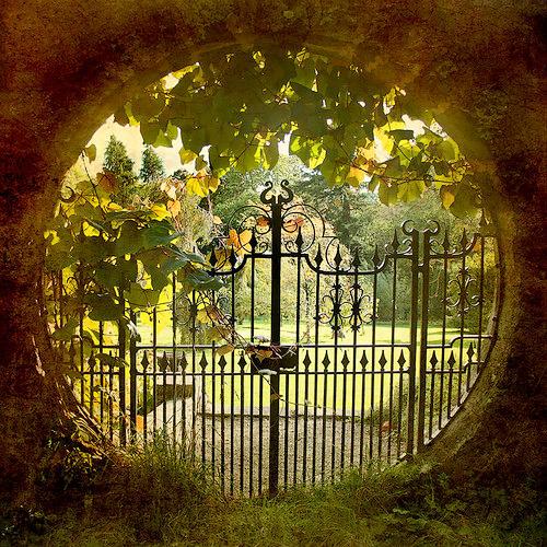 Bienvenue à Tous ! C'est avec grand plaisir que je vous ouvre les portes de mon humble logis.