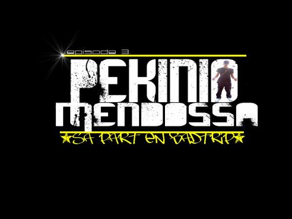 Les 2 soces - Sa part en badtrip(solo Pekinio) (2011)