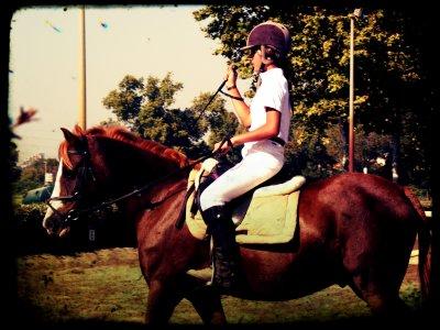 """Concours    """"Le cheval est la projection des rêves que l'homme se fait de lui-même : fort, puissant, beau, magnifique. Il nous offre la possibilité d'échapper à la monotonie de notre condition."""""""