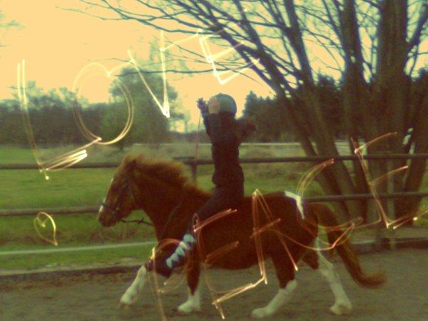 Pilgrime ♥