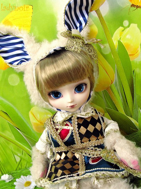 Avis n°31 [Pullip White Rabbit]