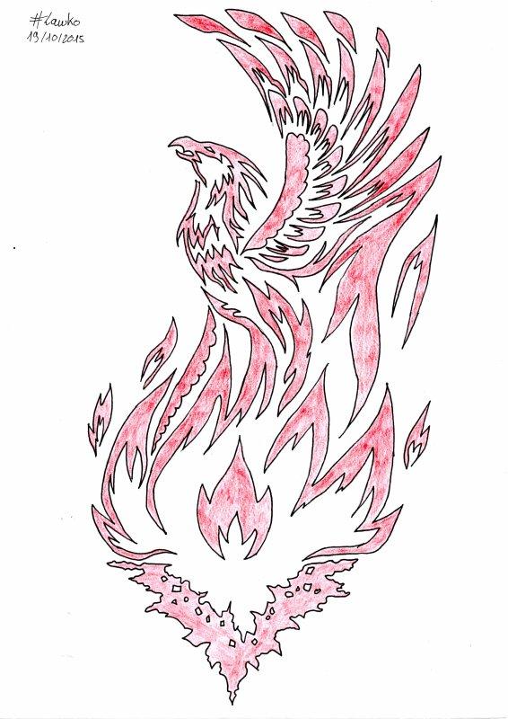 Dessin Tribal Phoenix Blog De Owen Grady