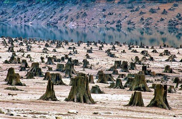 Photographies alarmantes qui illustrent la dégradation de notre belle  planète :