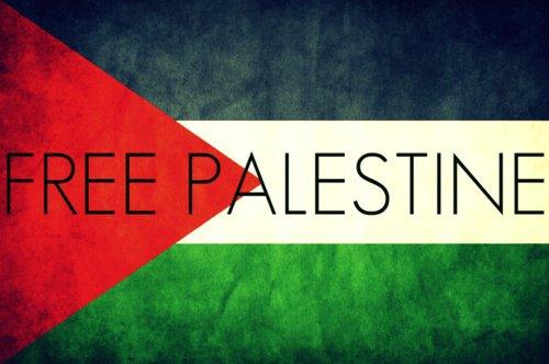 Free Palestine :Depuis 1987 Israël a tué près de 1500  enfants palestiniens...
