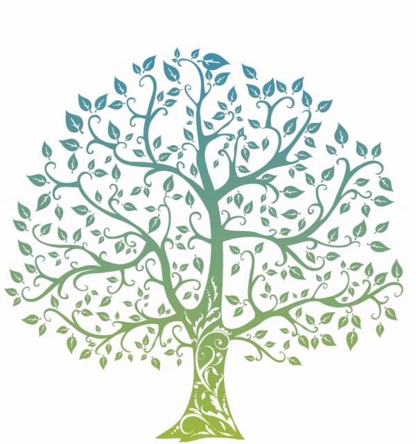Citation du jour  :   «  Le meilleur moment pour planter un arbre était il y a 20 ans. Le deuxième meilleur moment est maintenant. »