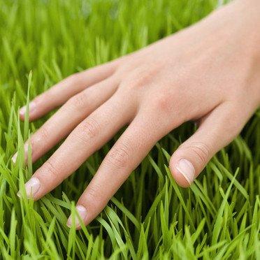 Symbolisme -  Les doigts et leurs significations.