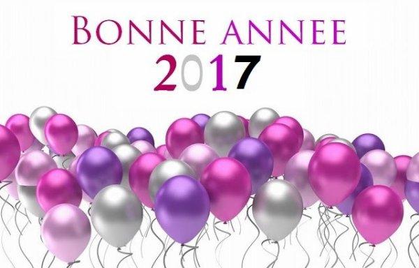 bonne et heureuse année à toutes les blogueuses