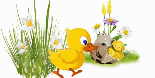 bonne fêtes de pâques  à touts