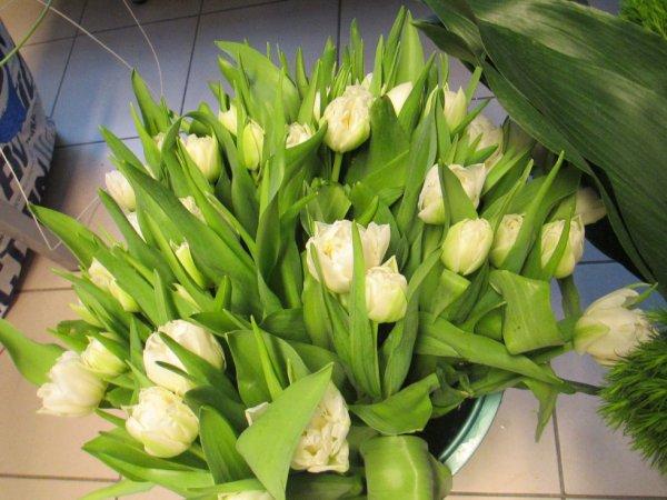 art floral du mois de janvier
