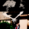 Hedwig's Theme From Harry Potter