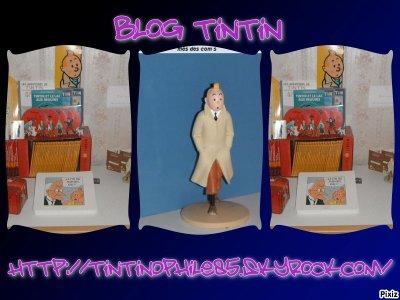 """bienvenus sur mon blog de """"tintin""""ou je collection dephis deja 1an & 1 mois"""